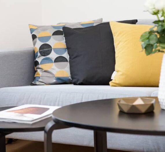 Decorative Throw Pillow Ideas…Just for Fun