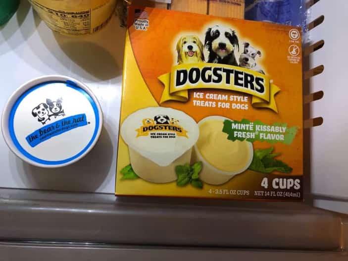 Dogster puppy ice cream